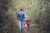 Back view of father and little daughter walking in the forest with their French bulldog - RAEF000660