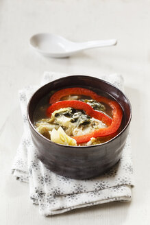 Bowl of vegan Chinese cabbage stew with tofu and slices of red bell pepper - EVGF002503