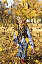 Laughing little girl throwing autumn leaves in the air - YFF000480