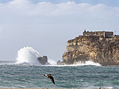 Portugal, Nazare, lighthouse and surf at rocky coast - LAF001567