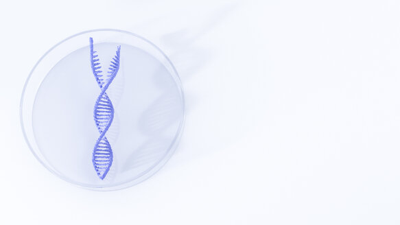 Separated DNA in petri dish, illustration - AHUF000067