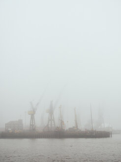 Germany, Hamburg, Port of Hamburg, Harbour cranes and fog - KRP001648