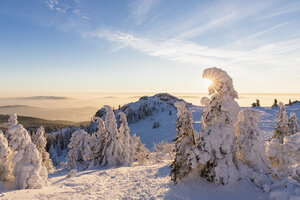 Germany, Bavaria, Bohemian Forest in winter, Richard-Wagner-Head and Great Arber at sunset - FOF008364