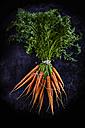 Bunch of carrots - KSWF001680