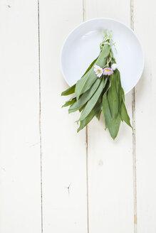 Fresh ramson and daisies - SBDF002522