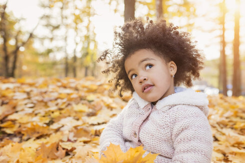 Little girl playing in autumn park - HAPF000008