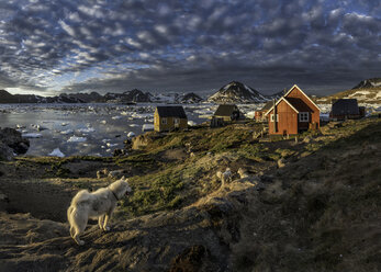 Greenland, Schweizerland, Kulusuk, houses and dogs - ALRF000231