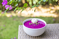 Bowl of dragon fruit smoothie - KNTF000208