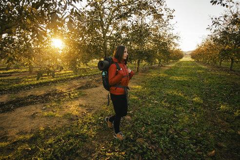 Spain, Catalunya, Girona, woman hiking on field at sunrise - EBSF001182