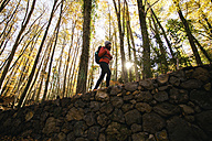 Spain, Catalunya, Girona, female hiker walking on stone wall in the woods - EBSF001203