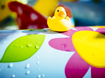 Rubber duck on edge of a paddling pool - KRP001687