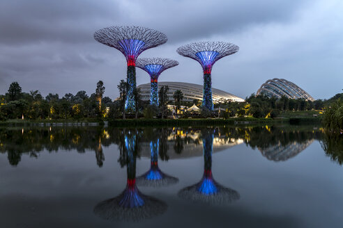 Singapore, Gardens by the Bay, Supertree Grove, Supertrees, illuminated in the evening - PC000214