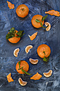 Clementines on blue background, peeled - SBDF002611