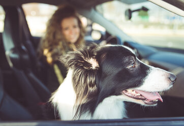 Woman driving car, dog sitting on passenger seat - OIPF000034
