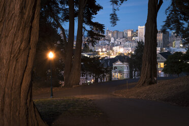 USA, Park, San Francisco at night - STCF000111