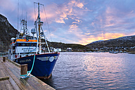 Norway, Troms, Ersfjordbotn, fishing boat in harbour at sunset - STS000978