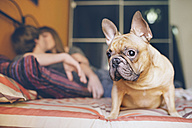 French bulldog sitting on the bed at home while young couple kissing in the background - GEMF000569