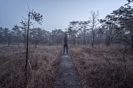 Unreal man standing on wooden boardwalk, Ibmer Moor - MW000104