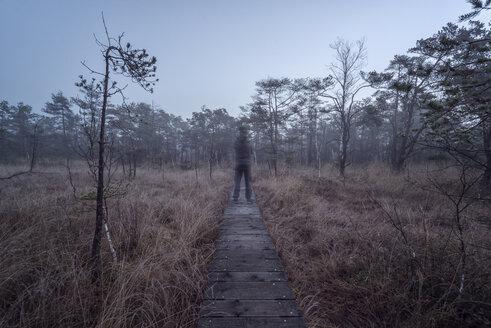 Unreal man standing on wooden boardwalk, Ibmer Moor - MW000104