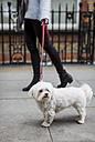 UK, London, young woman going walkies with her dog - MAUF000191