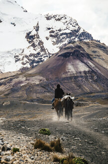 Man riding with two horses through the Cordillera Blanca, part of the Andes mountain range - GEM000589