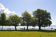 Germany, Friedrichshafen, Lake Constance, Promenade - SIEF006918
