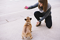 Young woman playing with her French bulldog on pavement - GEMF000611