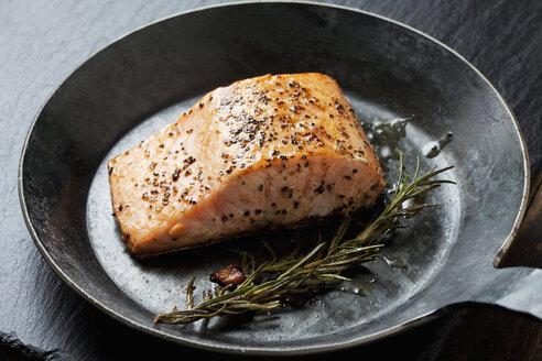 Fried salmon fillet in a frying pan - CSF026960