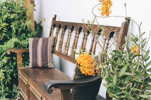 Cozy wooden bench with plants - GEMF000618
