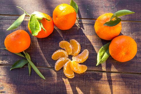 Tangarines on wood - SARF002434