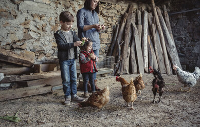 Woman and her children feeding hens with green grapes in a farm barnyard - DAPF000006