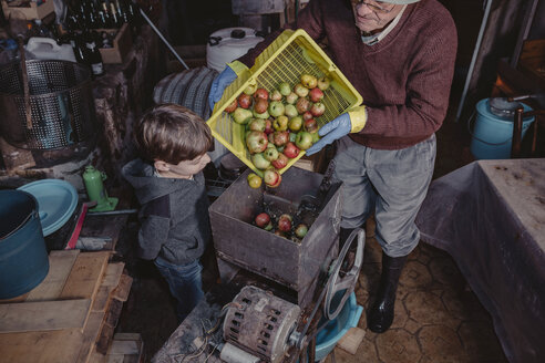 Little boy watching senior man turning basket of apples into a crusher - DAPF000009