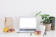 Still life with laptop, donuts and plant on desk - EBSF001229
