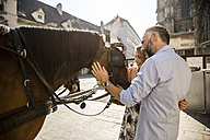 Austria, Vienna, couple stroking horse at Stephansplatz - AIF000265