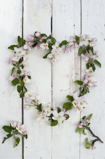 Wreath shaped of apple blossoms on white wood - ASF005801