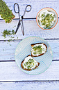 Slice of toasted  bread with organic curd and cress - LVF004441