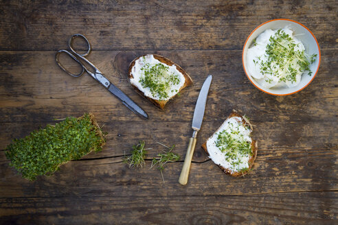 Slice of toasted  bread with organic curd and cress - LVF004444