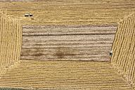 Aerial view of combine harvesters in field - KLEF000033
