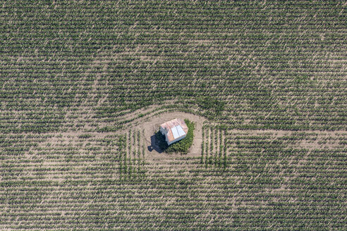 Aerial view of chapel in cornfield - KLEF000036