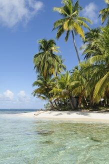 Panama, San Blas Islands, desert island, beach with palms - STEF000148