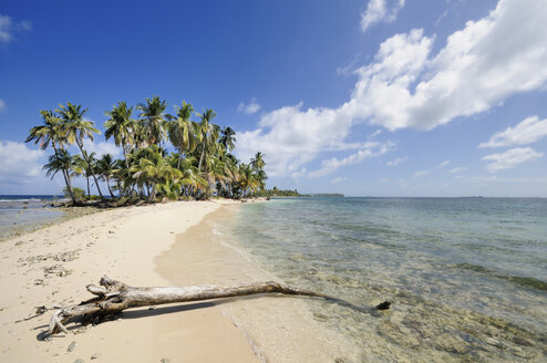 Panama, San Blas Islands, desert island with palms - STEF000151