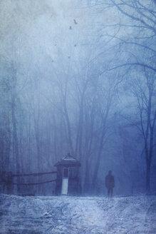 Germany, Man walking in winter forest - DWI000675