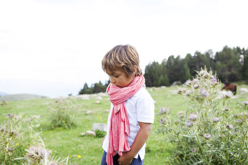 Spain, Cerdanya, little boy with pink scarf on a meadow - VABF000078