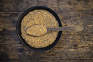 Bowl of organic einkorn wheat on dark wood - LVF004469