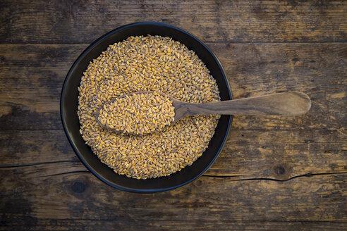 Bowl of organic einkorn wheat on dark wood - LVF004469