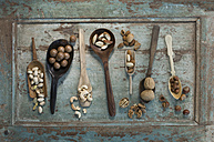 Row of spoons and shovels with different sorts of nuts on wood - ASF005823