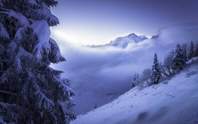 Germany, Bavaria, Berchtesgaden Alps, Hoher Goell - STCF000152