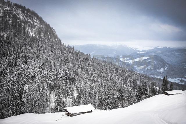 Austria, Salzburg State, Heutal, winter landscape - HAMF000139