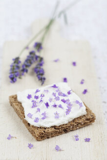 Slice of bread with curd cheese and lavendula blossoms on chopping board - GWF004585