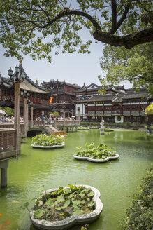 China, Shanghai, Pond in Yu Garden - NK000445